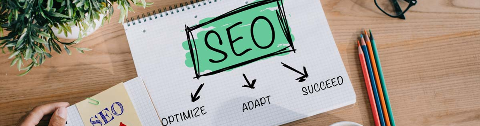 The 5 Characteristics of the best SEO company